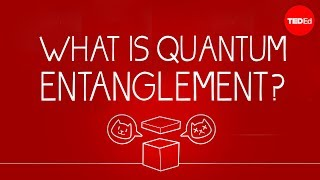 Download What can Schrödinger's cat teach us about quantum mechanics? - Josh Samani Video