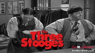 Download THE THREE STOOGES: Sing a Song of Six Pants (1947) (Remastered) (HD 1080p) Video