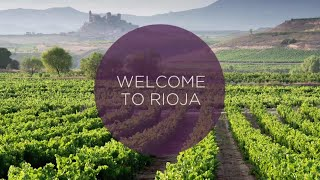 Download Ultimate Video Guide to the Rioja Wine Region Video