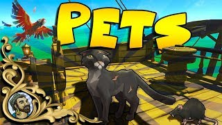 Download Sea Of Thieves - PETS UPDATE - Cats, Monkeys, Parrots and MEGALODON Video