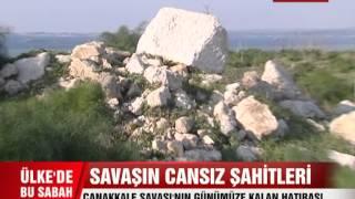 Download ÇANAKKALE SAVAŞI'NIN 'CANSIZ TANIKLARI' Video