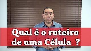 Download Qual é o roteiro de uma Célula ? - Pr. Bruno Monteiro Video