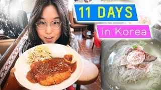 Download 11 DAYS IN KOREA 🤤 ft. Donkkaseu & BTS Footage Video