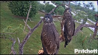 Download SWFL Eagles ~ ♥♥ Farewell E7 & E8 ♥♥ 5.27.16 Video