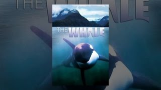 Download The Whale Video
