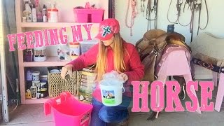 Download What I Feed My Horse! It's MADNESS! Video