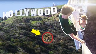 Download Climbing The Hollywood Sign! Video