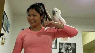 Download The Best Cockatoo Dance-Share Now if you liked it🤣🤣🤣😍 Video
