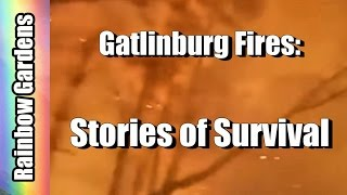 Download Gatlinburg Wild Fires - 3 Fire Survivor Stories: A Garden, a Pig, & an 82 Year Old Couple Video