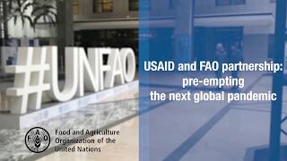 Download USAID and FAO partnership: pre-empting the next global pandemic Video