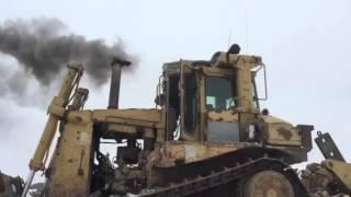 Download D8L Cold Start Video