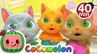Download Three Little Kittens | + More Nursery Rhymes & Kids Songs - ABCkidTV Video