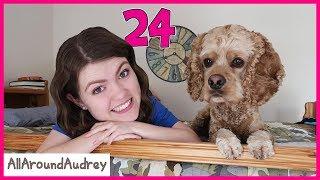Download 24 Hours In My Brothers Room / AllAroundAudrey Video