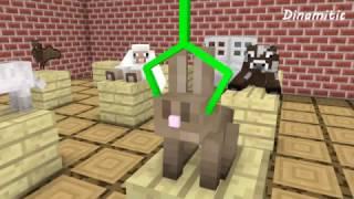 Download Monster School: Animal Brain - Minecraft Animation Video