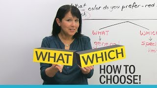 Download ″WHAT″ or ″WHICH″? Learn how to choose! Video