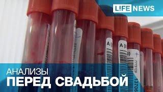 Download В России могут ввести обязательный тест на ВИЧ перед свадьбой Video
