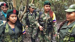 Download Los guerrilleros de las FARC y sus últimos días en la clandestinidad (EXCLUSIVA DE RT) Video