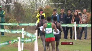Download 2015 world cross country championships men's race Video