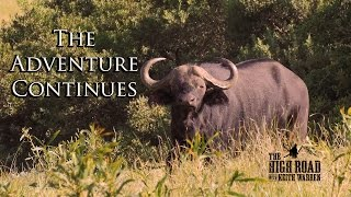 Download African Safari on the Eastern Cape | The Adventure Continues Video