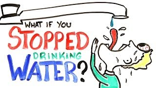 Download What If You Stopped Drinking Water? Video