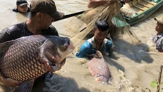 Download Top 4 Unbelievable Pro Fisherman Hunting River Monsters Video