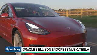 Download Oracle's Ellison Discloses Tesla Stake, Defends Musk Video