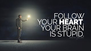 Download Follow Your Heart... Your Brain Is Stupid Video