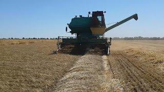 Download Сложнейшая уборка поваленной пшеницы 2017 года. ″ДОН 1500б″ и ″Нива ск-5″ Video