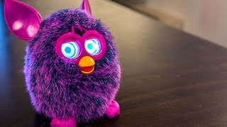 Download Do Furbies Really Learn? Video