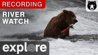 Download River Watch - Katmai National Park, Alaska powered by EXPLORE.org Video