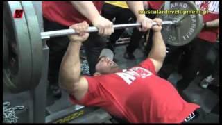 Download Arnold Classic 2011 - Animal vs Gaspari Team cz.2 Video