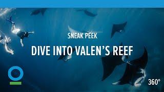 Download Sneak Peek: Dive into Valen's Reef (360 video)   Conservation International (CI) Video