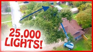 Download HE WRAPPED A 65 FT TALL TREE IN CHRISTMAS LIGHTS!! Video