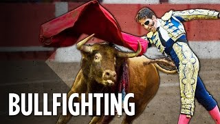 Download Why Barcelona Can't Ban Bullfighting Video