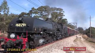 Download 6029 - Mount Victoria shuttles - May 2018 Video
