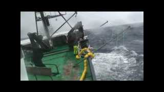Download Longlining for Toothfish at Heard Island on Austral Leader II - Winter 2009 Video