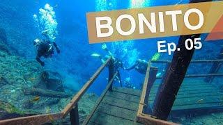 Download 3em3 :: Bonito - Brasil :: Ep. 05 :: Lagoa Misteriosa - Rio da Prata - Estância Mimosa Video