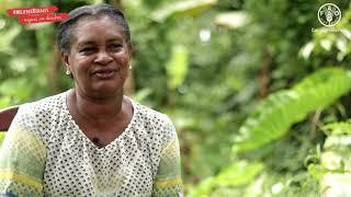 Download Campesina de República Dominicana hace llamado a crear políticas públicas para no tener que migrar Video