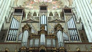 Download Pipe Organs - Magnificent Instruments Video