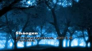 Download Streethawk 2012 - Remixed by Shaogen Video
