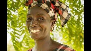 Download Guilé Mane - A farmer in Senegal Video