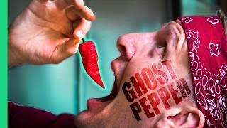 Download Spicy Indian Food Challenge! GHOST PEPPER Chutney and the SPICIEST Street Food in Delhi, India! Video