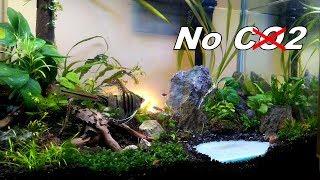 Download Update 60cm Aquascape - Cara Ganti Air yang Nyaman untuk Ikan Video