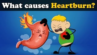 Download What causes Heartburn? | #aumsum Video