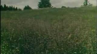 Download Filmist Nukitsamees - Kodulaul Video