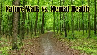 Download Nature Walks Good For Mental Health, Stress A Study Finds Video