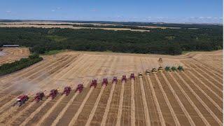 Download Canadian Foodgrains Bank Winter Wheat Harvest 2016- 18 Combines -Killarney, Manitoba Video