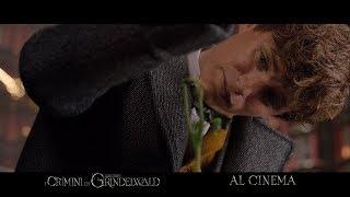 Download Animali Fantastici: I Crimini di Grindelwald | L'attesa è finita Video