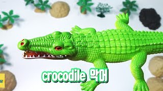 Download Learn english and korean with toys / crocodile, lizard, spider 토이 키즈 영어 Video