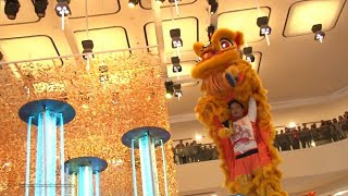 Download Hong Kong Chinese Lunar New Year 2017 - Lion Dance Performance @ Pacific Place Video